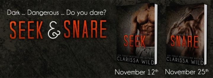 Seek & Snare Banner