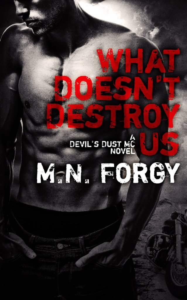What Doesnt Destroy Us (Devils Dust #1) by M N Forgy Amazon Cover