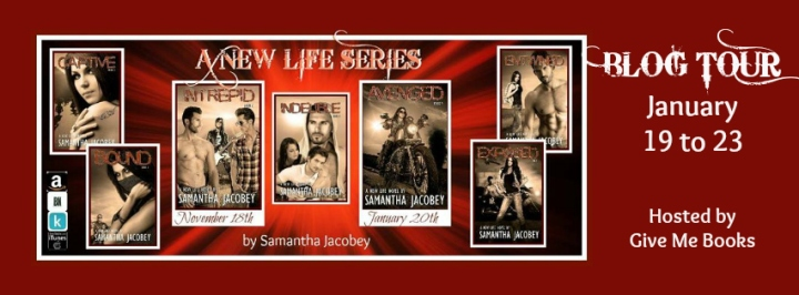 A New Life Series Banner