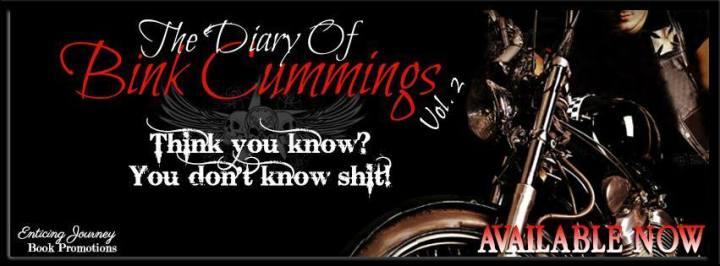 The Diary Of Bink Cummings Vol. 2 Banner
