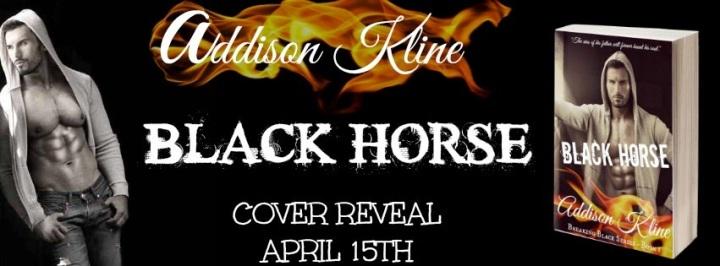 Black Horse Banner