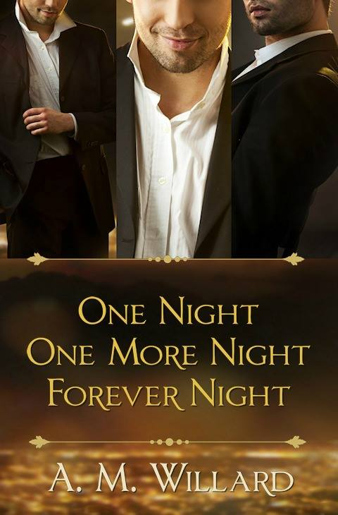 One Night Series Cover