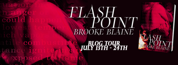 Blog Tour Banner - Flash Point