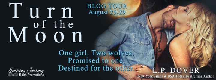 turn of the moon blog tour banner