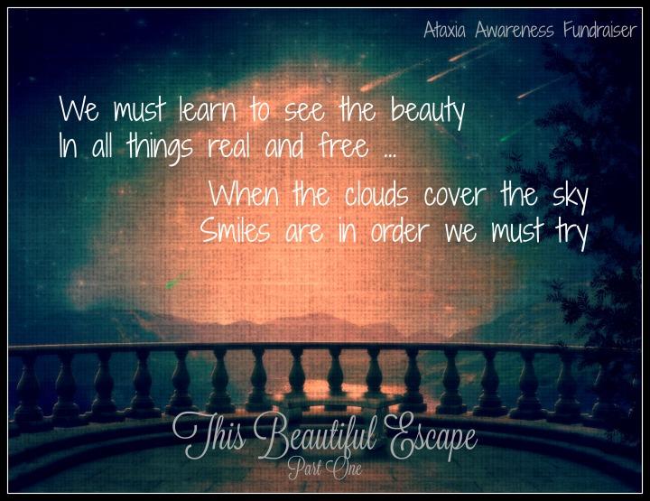 The Beautiful Escape Volume1(4)
