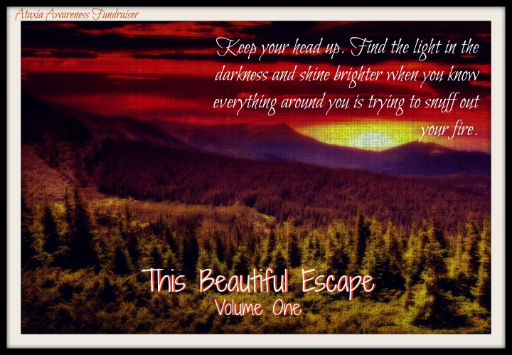 This Beautiful Escape Volume1(3)