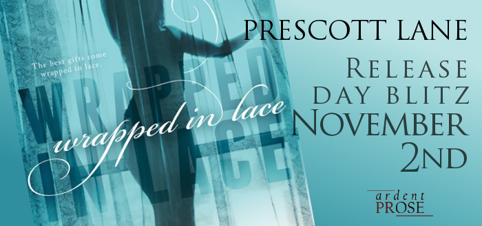 Wraped In Lace Release Day Blitz Banner