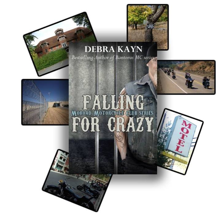 Falling For Crazy Cover