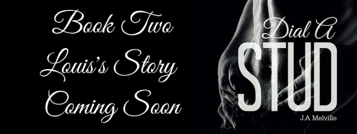 Louis's Story Banner