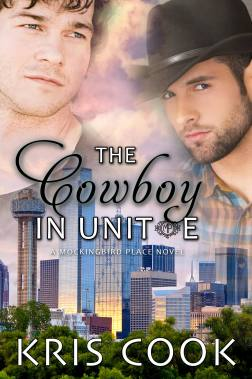 The Cowboy in Unit E ebook