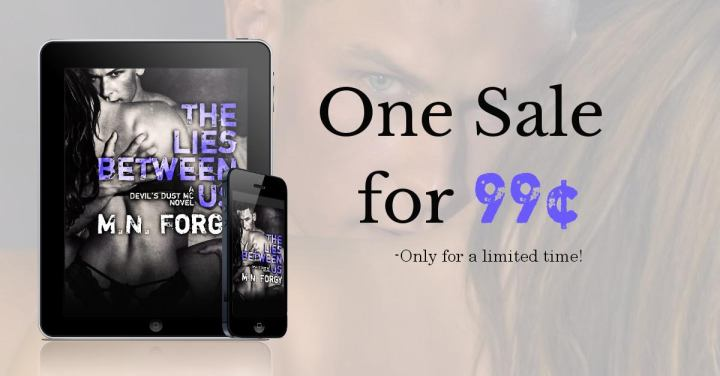 THE LIES BETWEEN US SALE GRAPHIC