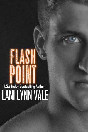 Flash Point Book cover