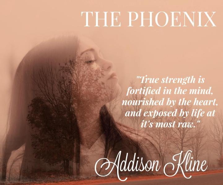 The Phoenix t5