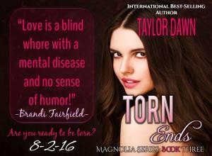 TornEnds Teaser 2
