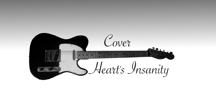 Heart's Insanity MEDIA KITCOVER