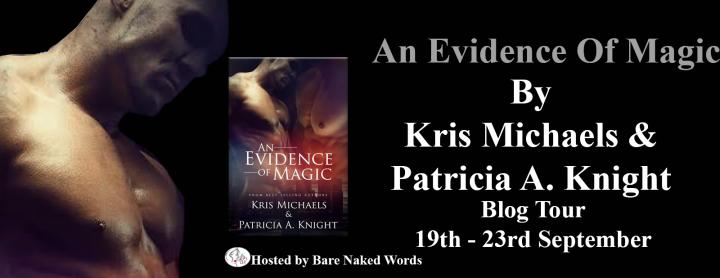 an-evidence-of-magic-tour-banner
