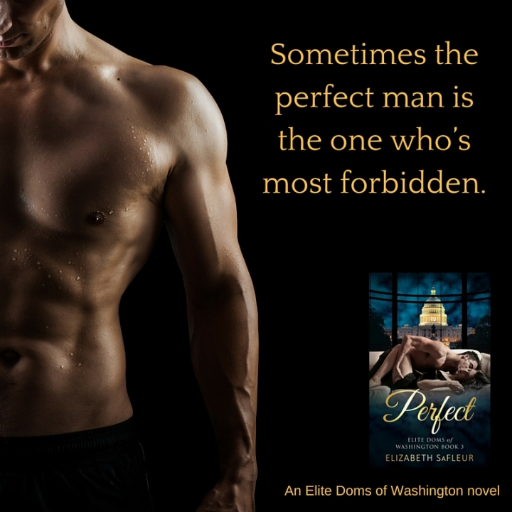 perfect-an-elite-doms-of-washington-novel