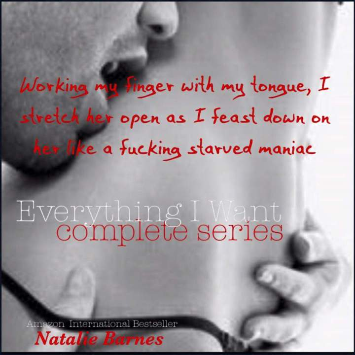 everything-i-want-complete-series-nbarnes-3