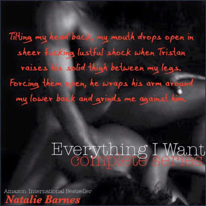 everything-i-want-complete-series-nbarnes-5