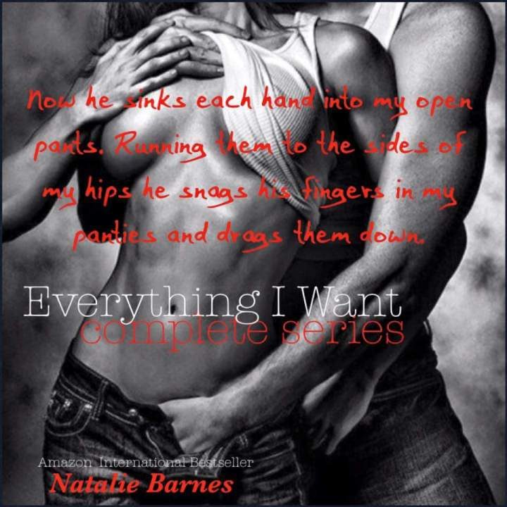 everything-i-want-complete-series-nbarnes-7